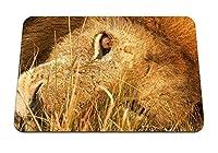 26cmx21cm マウスパッド (ライオン嘘草目大きな猫捕食者) パターンカスタムの マウスパッド