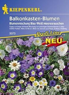Blumenmischung Balkonkastenblumen Meeresrauschen BlauWeiss
