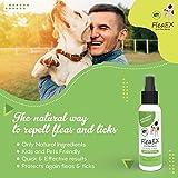 IMG-1 fleaex antiparassitario cani spray repellente