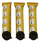 COCOYAYA Polo Quick Light Charcoal for All Hookah - 3 Rolls (30 Disks)