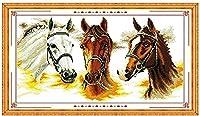 HMTTKPRO刺繡クラフトキット(11CTスタンプクロスステッチキット馬DIYクロスステッチ用品大人初心者子供針仕事ニードルポイントギフトキット家の装飾工芸品16x20インチ
