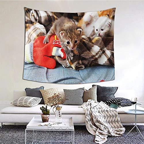 Tapiz de Pared,Kittens And Mittens Newborns Baby Animals In An Plain Blanket Wood Play Toys Tapestry (Colgante de Pared)Decoración de Pared Mural del hogar para Dormitorio Sala de Estar 152cmx102cm