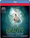 英国ロイヤル・バレエ《眠りの森の美女》 [Blu-ray]の画像