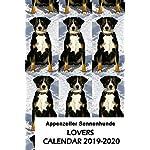 Appenzeller Sennenhunde Lovers Calendar 2019-2020 3