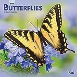 Butterflies - Schmetterlinge 2021 - 16-Monatskalender: Original BrownTrout-Kalender [Mehrsprachig] [Kalender] (Wall-Kalender)