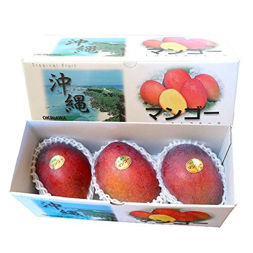 沖縄県産 アップルマンゴー 贈答用 約1kg