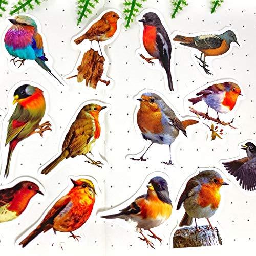 PMSMT 40 unids/Pack pájaros Bonitos PVC Pegatina Impermeable DIY artesanía álbum de Recortes Diario Basura planificador Pegatinas Decorativas