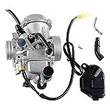 bibididi Carburador TR-X 350 para Hon-Da 350 Rancher 2000-2006 Fe/FM/Te/TM/Es ATV 4 Tiempos, cortacésped con Rodillo de Rayas