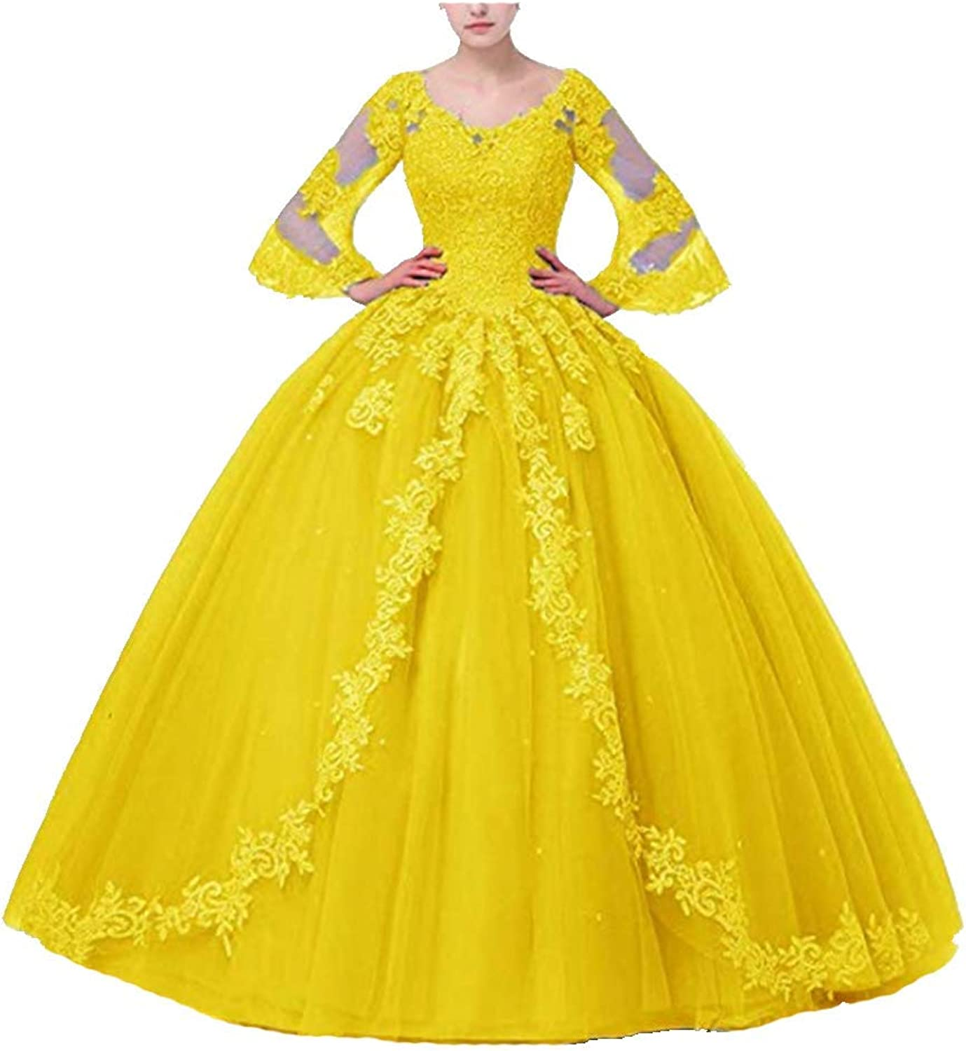 FWVR Women's Appliques Long Sleeves Ball Gown Sweet 16 Quinceanera Prom Dresses Plus Size