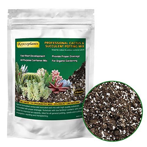 Organic Succulents & Cactus Soil Mix, Professional Potting Soil, Fast Draining Pre-Mixed Blend, Small Bag Garden Soil for Indoor Plants, Aloe Vera, Snake Plant, Spider Plant, ZZ Plants, 2 Quarts