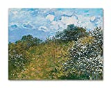 Dimensions - 12 inches x 9 inches + Additional border on each side for framing. 100% Pure Cotton Canvas - Recyclable - 0% PVC/Plastic. Specially desgined for Fine Art reproduction. Thickness - 370 GSM. Finish - Ultra thin Gloss finish for Color prote...