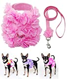 Dashin' Dogz Floral Pink Dog Harness and Matching Leash Set for XSmall and Small Breeds Stylish, Cute, Soft and Comfortable