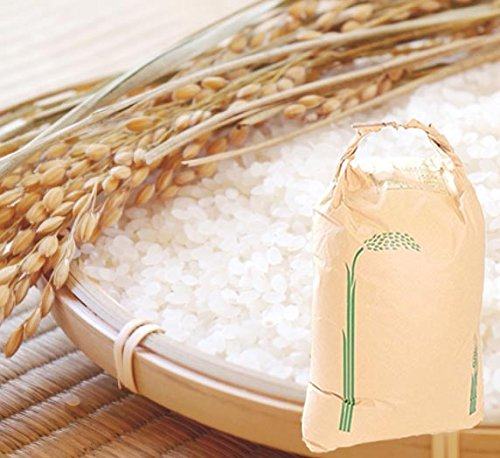 【新米 精米】長崎県産 農家直送 にこまる 子供に食べさせたいお米 20kg 令和元年産