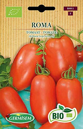 roma tomaten lidl