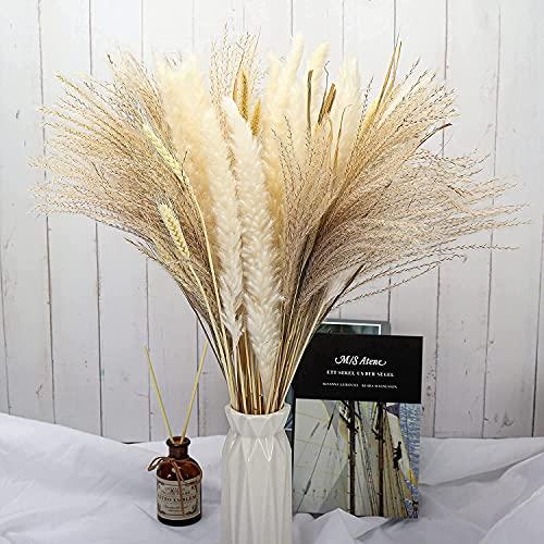 Natürliches Pampasgras Dekor, getrocknetes Pampasgras flauschig, Faux Pampasgras für Heimküche, Wohnzimmer, Hochzeit, 75 Stück