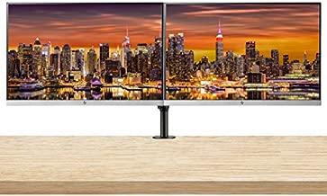 HP EliteDisplay E243 24 Inch IPS LED Backlit Monitor (1FH47A8#ABA) 2-Pack Bundle with Fully Adjustable Desk Mount Monitor Stand