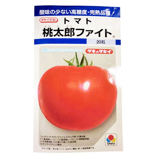 大玉トマト 種 【 桃太郎ファイト DF 】 種子 小袋