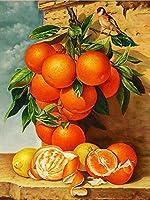 Diyデジタル絵画by数字キット フルーツオレンジの愛 ペイントバイナンバーキット ブラシとアクリル ク 40x50cm