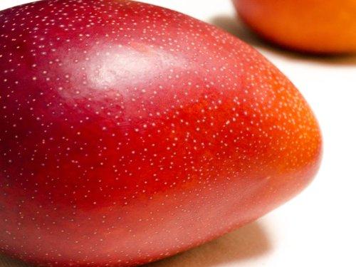 フルーツなかやま 宮崎産 完熟マンゴー 1個入り 特大4Lサイズ JA宮崎中央 大きさ12�p以上 糖度13度以上