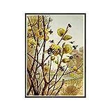 Shmjql Vintage Bee Prints Cartel Natural Insectos Bumblebee Art Prints Arte De La Pared Pintura En Lienzo Arte Botánico Diagrama De Abeja Decoración De La Pared-50X70Cmx1 Sin Marco