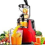 Portátil Licuadora Personal Exprimidor lenta máquina, por todo frutas y verduras, fácil de limpiar Cold Press...
