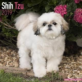 Shih Tzu Calendar 2019