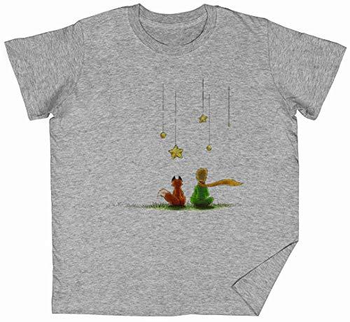 Le Petit Prinz Grau Kinder Jungen Mädchen T-Shirt Unisex Größe XXL Grey Kid's Boys Girls Tee Size XL
