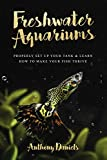 Freshwater Aquariums: Properly Set Up Your Tank & Learn How to Make Your