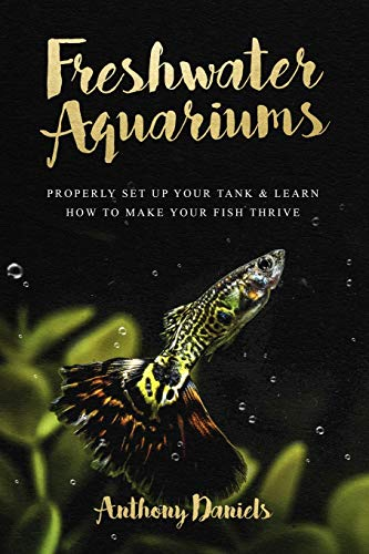 Freshwater Aquariums: Properly Set Up Your Tank & Learn How to Make Your Fish Thrive