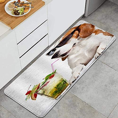 VAMIX Alfombra de Cocina,Bebidas Gafas De Sol Beagle,Lavable Antideslizante Alfombrilla de Goma Alfombra de Baño Alfombrillas Cocina