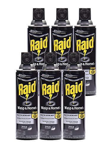 Raid Wasp Hornet Killer Spray (14 Ounce (Pack of 6)