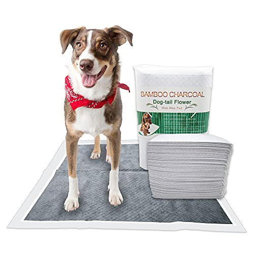P-A-D-S Dog Pads for Training, Disposable, Leak-Proof, Bamboo Charcoal, Odor Remove, Double Thickness, Supper Absorbent (23.5