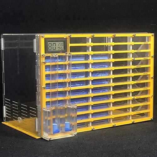 WWL Cajas de Insectos King Size acrílico Profesional Ant Farm con la alimentación Nido Área Hormigas Casa Taller Hormiga Insecto jerarquía 11layers Mascotas Hormiguero
