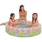 Piscina de la Familia Inflable Redonda Completa Redonda de los niños Piscina Inflable Pool (Color : C)