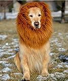 Zoom IMG-1 etpark cane pet costume grande