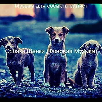 Собаки Щенки (Фоновая Музыка)