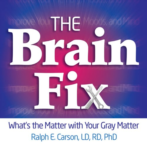 The Brain Fix cover art