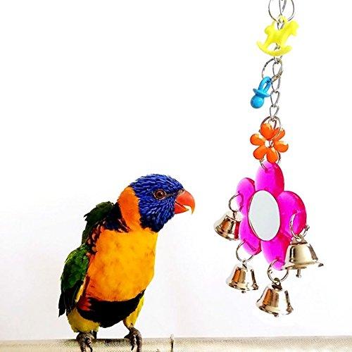 Spiegel-Spielzeug für Vögel - Papageien, Wellensittiche, Sittiche, Nymphensittiche, Graupapageien, Aras, Amazonas-Kakadus, Käfig-Glocken-Spielzeug