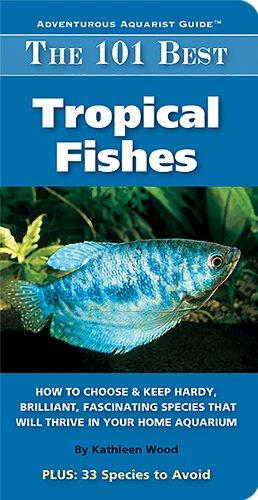 Best Fish Tanks To Buy
