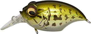 Megabass 2016 New SR-X Griffon [Japan Import]