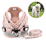 Zunea No Pull Small Dog Harness and Leash Set Adjustable Reflective Step-in Chihuahua Vest Harnesses Mesh Padded Plaid Escape Proof Walking Puppy Jacket for Boy Girl Pet Dogs Cats Pink M