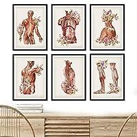 花人体解剖学医学壁アートキャンバス絵画北欧のポスターとプリント壁の写真リビングルームの装飾  30x42cmx6フレームなし