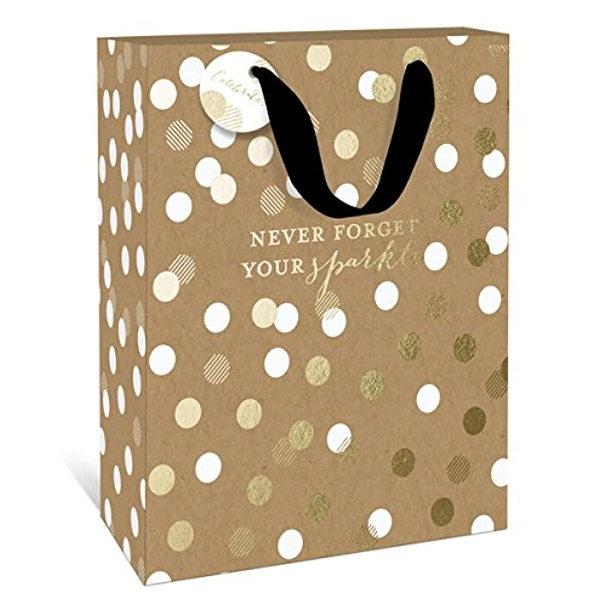 Never Forget Your Sparkle Medium Gift Bag