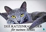 Der Katzenkalender für meinen Schatz (Wandkalender 2020 DIN A3 quer): Besinnliche und heitere Lebensweisheiten für Katzenliebhaber (Monatskalender, 14 Seiten ) (CALVENDO Tiere)