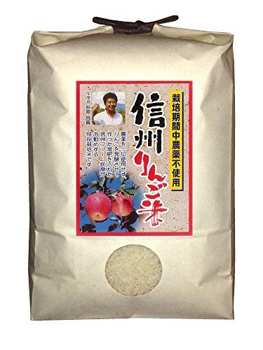 【新米】白米 信州りんご米 こしひかり 4.5kg 令和2年産