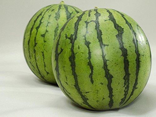 フルーツなかやま 小玉西瓜 2個入 幅11�p以上 高さ12�p以上 糖度9度以上