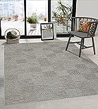 the carpet Calgary In- & Outdoor Teppich Flachgewebe, Modernes Design, Trendige Farben, Superflach, UV- und Witterungsbeständig, Grau-Beige, 160 x 220 cm