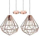 iDEGU - Lote de 2 lámparas de techo modernas, lámpara de techo, diseño de jaula de metal, decoración de iluminación para dormitorio, salón, comedor, oro rosa (25 cm)