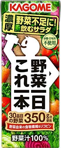 野菜一日これ一本 200ml×24本 紙パック