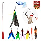 WLOT 8 Pieces of Cat Toy Cat Feather Toy Intelligent Toy Interactive Pen Teaser with a telescopic Pole with 7 Spare Nibs for Cats Kitty